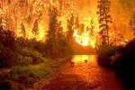 Corsi di formazione per addetti alla prevenzione incendi
