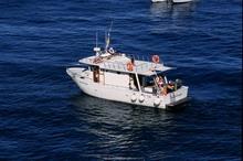 Foto 06 - Imbarcazione Pescaturismo
