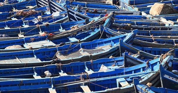PESCA - Un mln per i tirocini di 29 giovani sulle barche