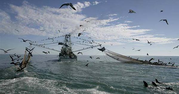 PESCA - Da Ue nuove limitazioni per le marinerie dell'Isola