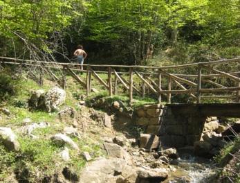 Parco dei Nebrodi: la più grande area protetta della Sicilia