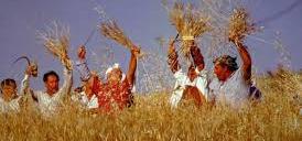 Festa del Grano a Raddusa