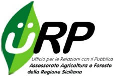 Logo URP