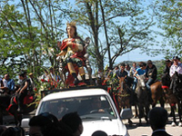 Sfilata cavalieri e cavalli